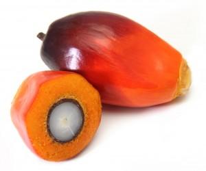 Glycerine - Palm Oil